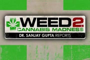 Weed-2