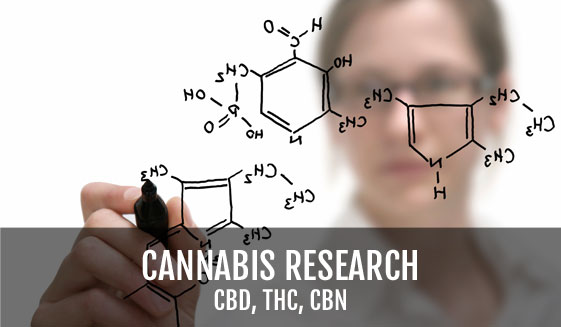 Biotechnology Company Awarded NIDA & NIH Grant to Develop Pharmaceutical Grade CBD