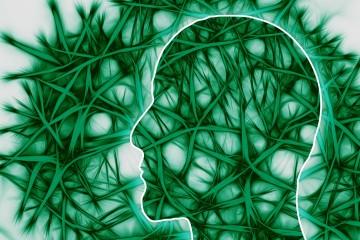 neural-pathways-221718_1280